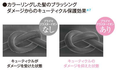 プラズマクラスターのキューティクル保護効果